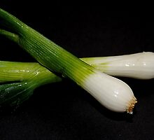 Scallions by Photography by Mathilde
