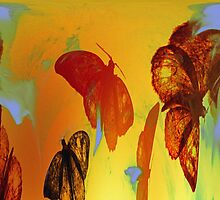 Like A Moth To The Flame Abstract by Terri Chandler