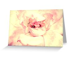 Fluffy Pink Greeting Card