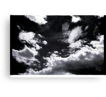 00298 Canvas Print