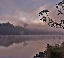 Foggy Morning by mindy23