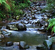 Little Creek. by Bette Devine
