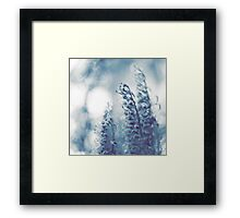 Tangled up in blue Framed Print