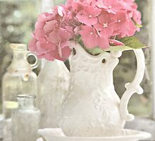Hydrangea By The Window by Shelly Harris