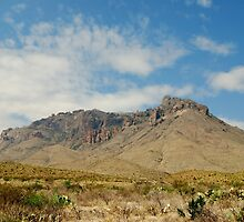 Big Bend Splendor by designingjudy