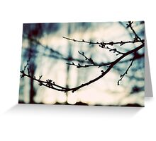 Cool Sky Greeting Card