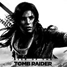 Rise of the Tomb Raider by behindsky