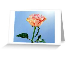 Reach for the Sky ! Greeting Card