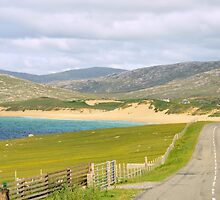Harris: Touring The Coast by Kasia-D