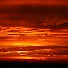 Blast of Sunset by Laurie Puglia