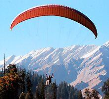 Paragliding by Pratham Arora