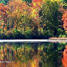 Autumn At Laurel Lake by AngieDavies