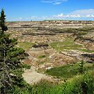 Horseshoe Canyon by Tracy Friesen