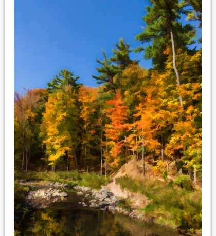 Impressions of Forests - Autumn on the Riverbank Sticker