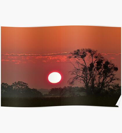 South Africa Sunset Poster