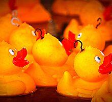 Hook a duck by debp0503