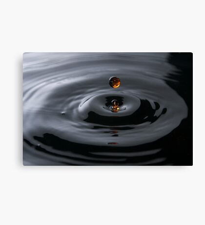 water droplet  Canvas Print