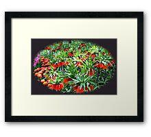 0range Crown Imperials - Keukenhof Gardens Framed Print