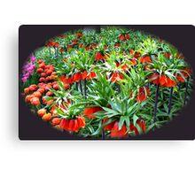 0range Crown Imperials - Keukenhof Gardens Canvas Print