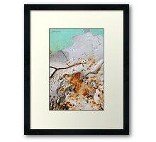 Winter's Demise Framed Print