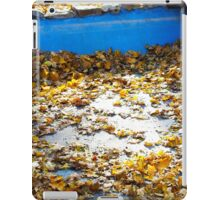 Empty and dry the artificial pond in the park iPad Case/Skin