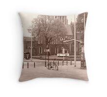 swansea Throw Pillow