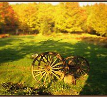 Wagon Wheels in an Autumn Field by Wayne King