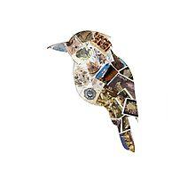 australian kookaburra stamp bird Photographic Print