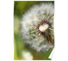 Make a Wish... Poster