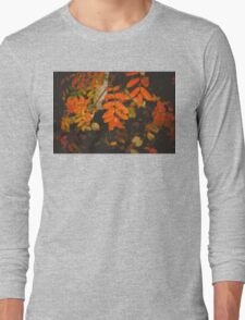 Autumn Tree Branches Long Sleeve T-Shirt