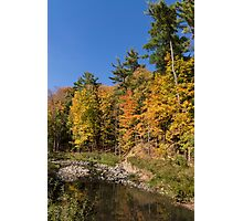 Autumn on the Riverbank - the Changing Forest Photographic Print