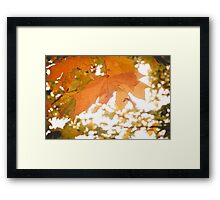 Autumn Tree Branches 3 Framed Print
