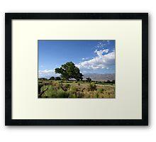 Bishop Landscape Framed Print