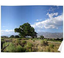 Bishop Landscape Poster