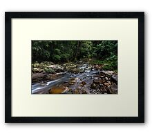 Creek in the Wilderness Framed Print