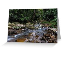 Creek in the Wilderness Greeting Card