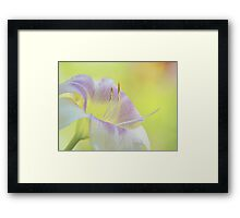 Like a bride 's final touch in the mirror   Framed Print