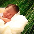 In the reeds by redhairedgirl