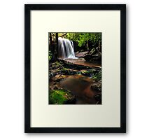 Untidy Forest Framed Print