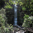 Great ocean road waterfall  by Louise Delahunty