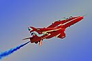 The Red Arrows Duxford 4 by Colin  Williams Photography