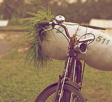 Bali Bike by Valerie Rosen