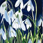 Snowdrops in the Sun by Esmee van Breugel