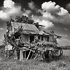 Suriname by Pim Kops
