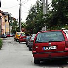 The cars by rasim1