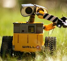 WALL E by net73