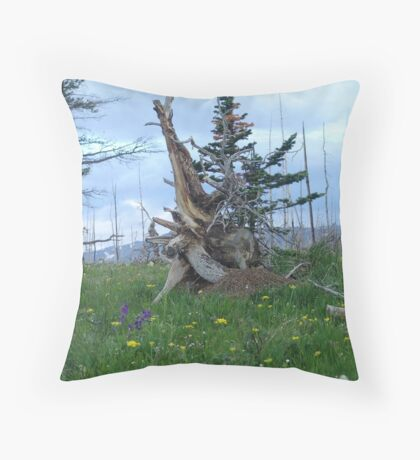 ROOT SCULPTURE IN A BURN - NR BROWNING, MT Throw Pillow