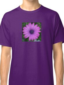 Purple African Daisy with Raindrops Classic T-Shirt