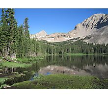 Summer in the Rockies Photographic Print
