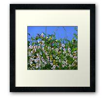 Summer Hedgerows Framed Print